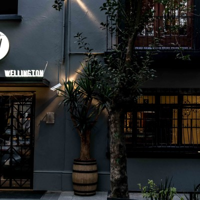 WELLINGTON CONDESA