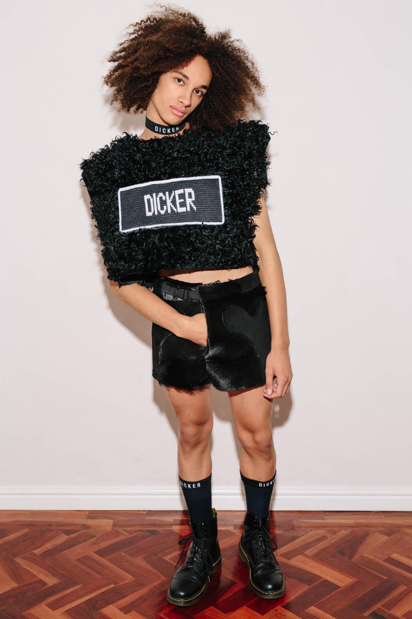 Dicker-2